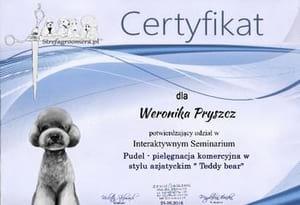 Certyfikat Pielęgnacji w stylu azjatyckim rasy Pudel