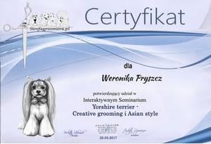 Certyfikat Creative groomingi Asian style