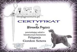 Certyfikat Pielęgnacji rasy Gordon-seter