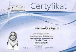 Certyfikat Pielęgnacji rasy Shih Tzu