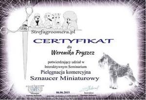 Certyfikat Pielęgnacji Komercyjnej rasy Sznaucer Miniaturowy