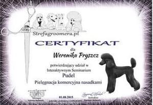 Certyfikat Pielęgnacji Komercyjnej nasadkami rasy Pudel