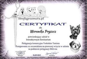 Certyfikat Pielęgnacji rasy Yorkshire Terriers